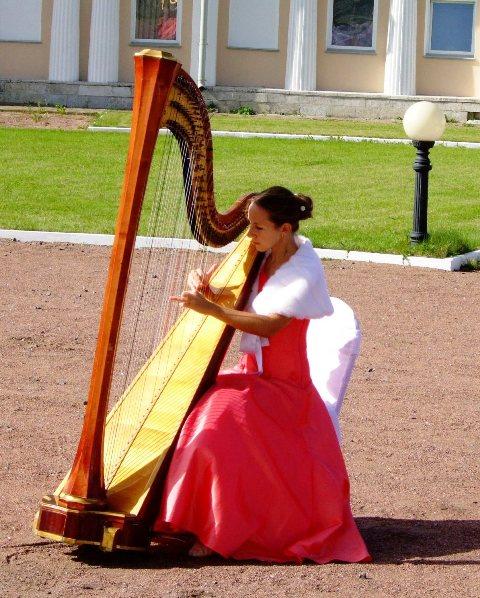 Арфа - красивое музыкальное сопровождение Вашего мероприятия!